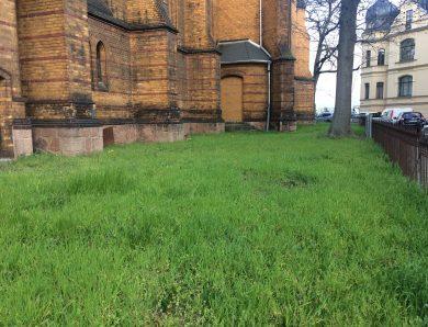 Grünanlage rund um die Stephanuskirche